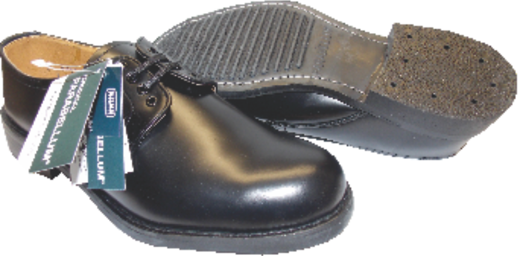 Mens Parabellum Safety Shoes SABS approved